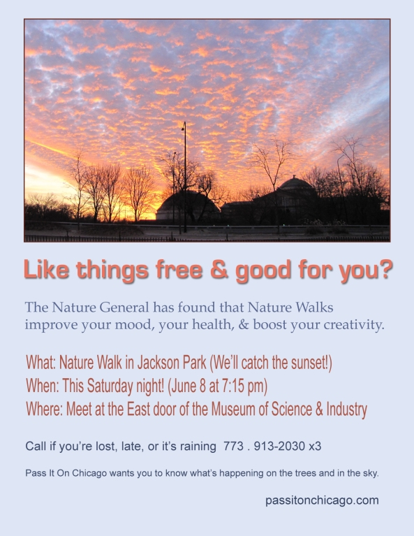 christa nature walk flier