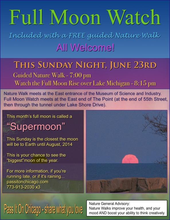 Full Moon Watch 06-20-13