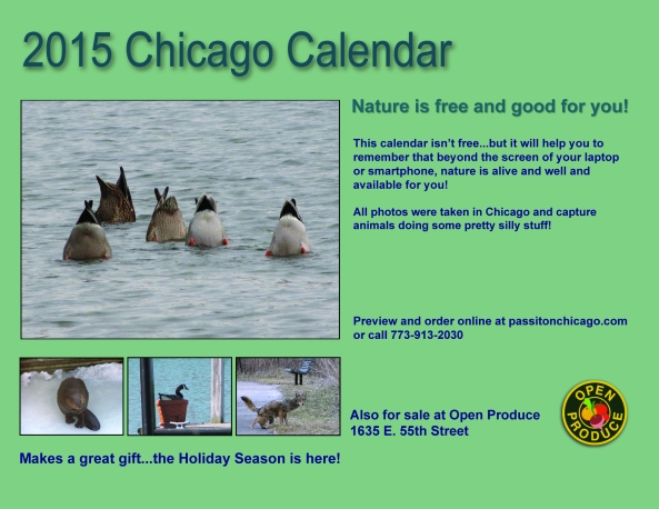 2015  calendar flier 2 - christa layout