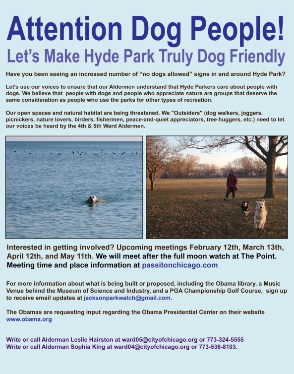 new-jackson-park-flier-feb-2017-dog-christa-update-02-08